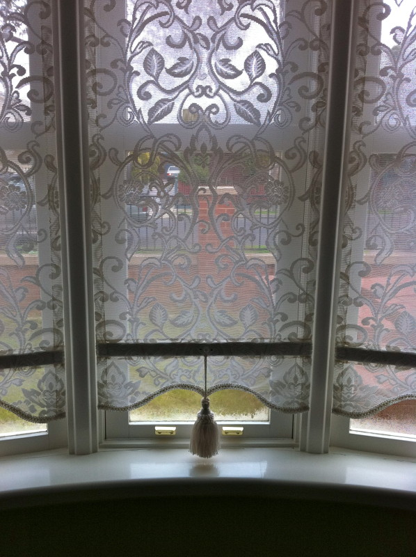 Lace Plasticised Blinds O Gorman S Lace Blinds